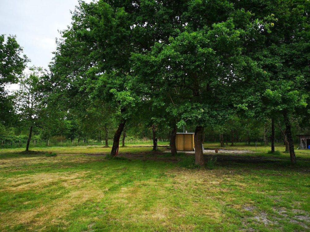 Aire camping-car à Salles (33770) - Photo 2